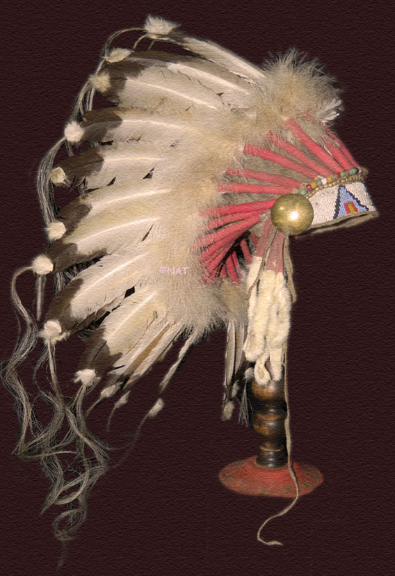 Cheyenne Headdress / War Bonnet