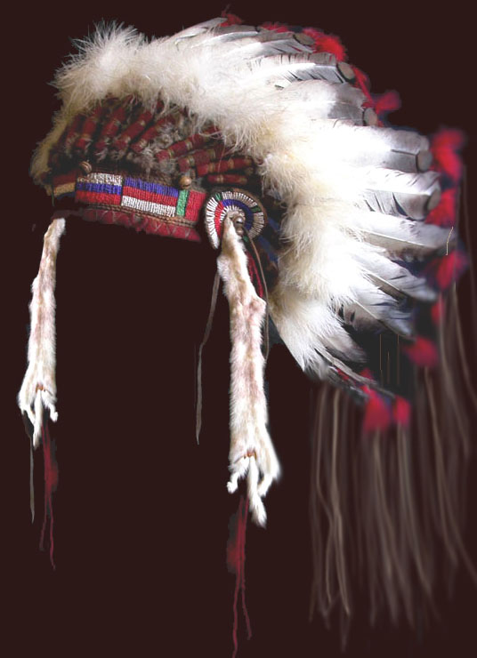 Plains Indian War Bonnet