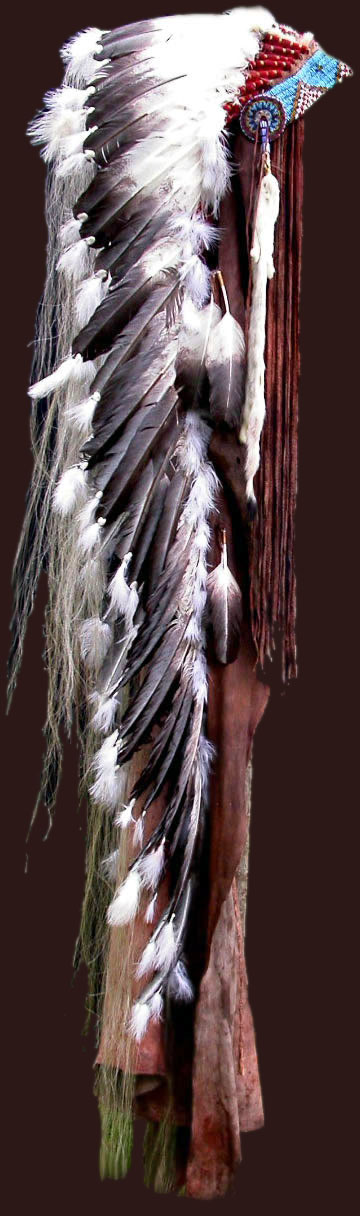 native american headdresses feather and horned warbonnets