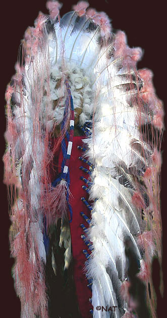 Back of Headdress