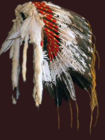 Blackfoot headdress / war bonnet